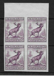 NEWFOUNDLAND SG213a 1932 5c MAROON IMPERF x 2 PAIRS MNH - MOUNTED ON SELVEDGE