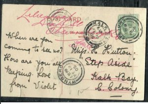 CAPE OF GOOD HOPE COVER (P3006B)  1905 KE 1/2D ON PPC TO  KALK BAY  #2