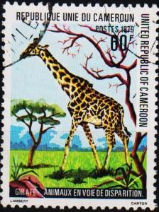 Cameroun. 1979 60f. S.G.857 Fine Used