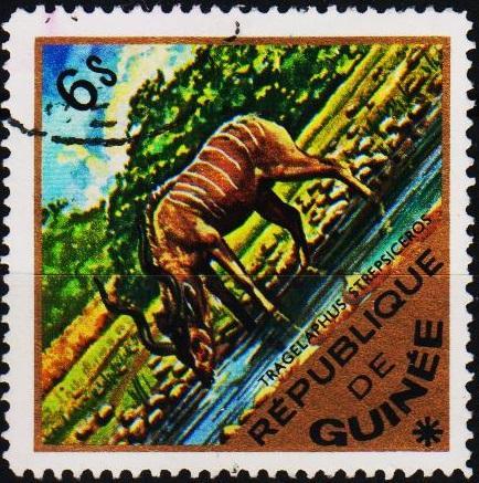Guinea. 1975 6s. S.G.876 Fine Used
