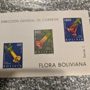 Bolivia C239a XFNH, CV $18