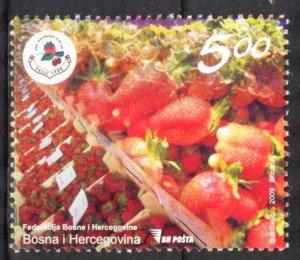 Bosnia 2009 Business Fair Days of Berry-like Fruits MNH