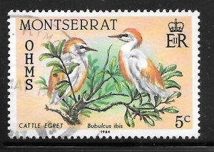 Montserrat O65: 5c Cattle Egret (Bubulcus ibis), used, VF