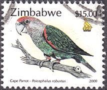 Zimbabwe # 849 used ~ $15 Cape Parrot