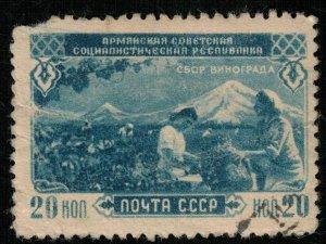 Armenia, grape harvest, 1950, Rare (Т-8243)
