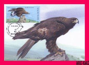 MOLDOVA 2019 Europa CEPT Fauna Predatory Bird of Prey Golden Eagle Maxicard Card