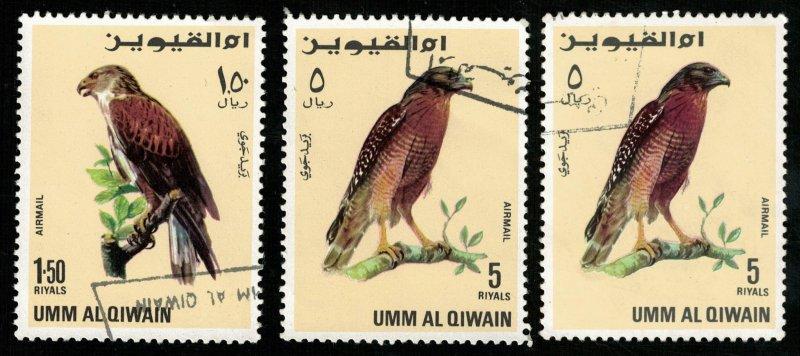 Birds, (4162-T)