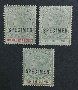 MOMEN: LAGOS SG #39s-41s SPECIMEN 1887-1902 MINT OG LH LOT #191481-444