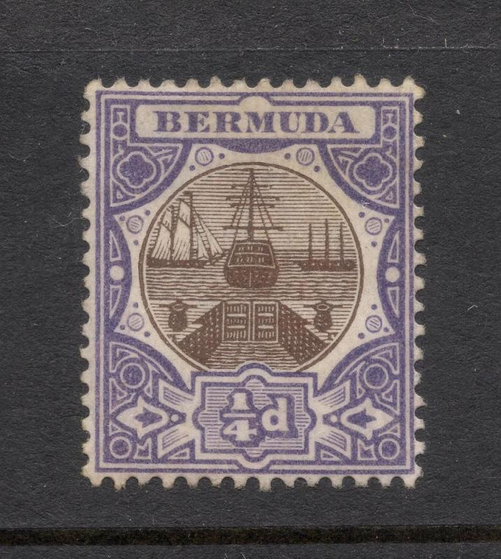 Bermuda #31 Purple & Brown - Unused