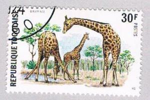 Togo 888 Used Giraffes 1974 (BP3186)