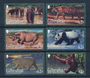 [30194] Gibraltar 2011 Endangered Animals Mammals  MNH