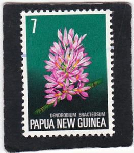 PAPUA  NEW  GUINEA, #   402    used