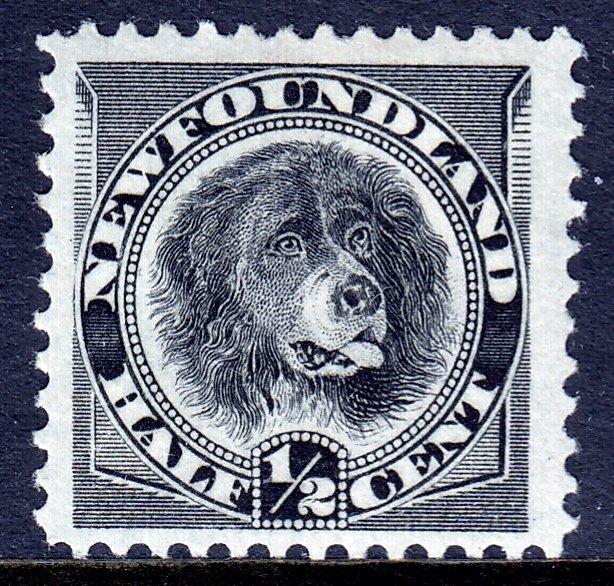 Newfoundland - Scott #58 - MH - SCV $9.00