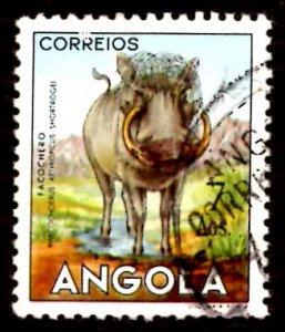 Angola 1953 African Wart Hog Wild Animals 7a Scott.377 Used (#8)