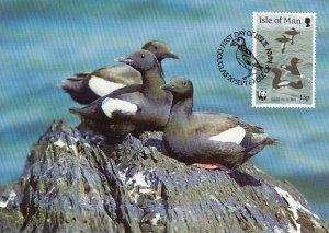 Isle of Man 1989 Maxicard Sc #400 13p Black guillemots WWF