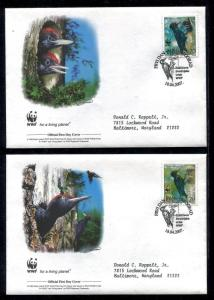 Serbia FDC WWF Birds Black Woodpecker  2007 x20235