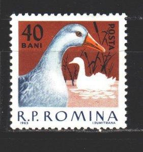 Romania. 1963. 2147. Goose bird fauna. MNH.