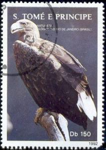 Bird, White-tailed Eagle, St. Thomas & Prince Islds SC#1054Q
