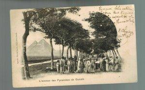 1903 Zanzibar picture postcard cover to Rosario Argentina Pyramids of Giza Egypt