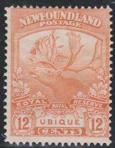 Newfoundland - 1919 12c Caribou mint #123