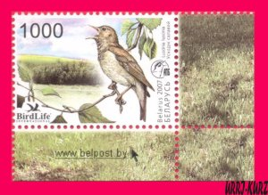 BELARUS 2007 Nature Fauna Bird of Year Nightingale 1v Sc617 Mi662 MNH