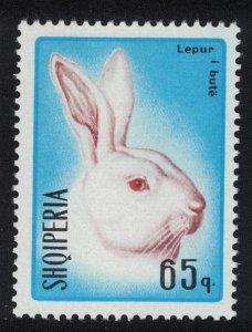 Albania Head of white rabbit 65q 1967 MNH SG#1159
