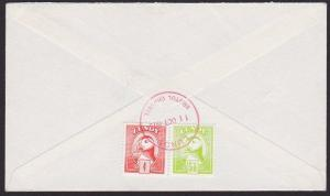 GB LUNDY 1975 cover Lundy meter Delayed By Storm - puffin stamps............5159