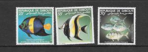 FISH - DJIBOUTI #521-23