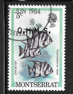 Montserrat O45: 5c Atlantic Spadefish (Chaetodipterus faber), used, VF
