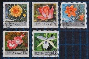 Flowers, USSR, (2590-Т)