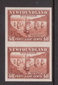 Newfoundland #199a Extra Fine Never Hinged Imperforate Pair