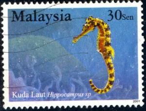 Sea Horse, Malaysia stamp SC#853 used