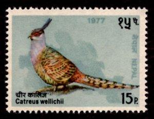 Nepal 1977 Cheer Pheasant Bird 15p Scott.332 MNH