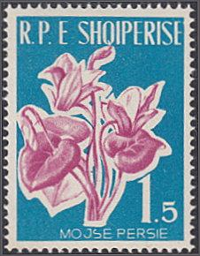 Albania # 595 mnh ~ 1.50 l Flowers - Cyclamen