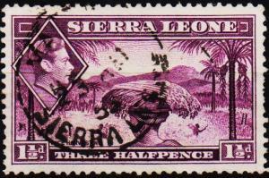 Sierra Leone. 1938 1 1/2d S.G.190a Fine Used