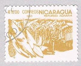 Nicaragua Bananas 1000 - pickastamp (AP107407)