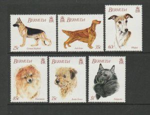 Bermuda 1992 Dogs MM SG 655/60