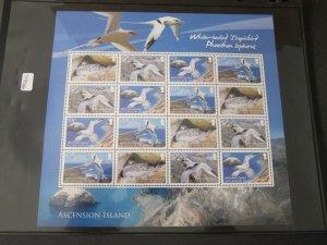 Ascension 2009 Sc 992a bird set MNH