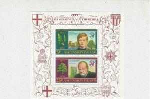 Ascension Island Sir Winston Churchill MNH Historic Mini Stamps Sheet Ref 27107