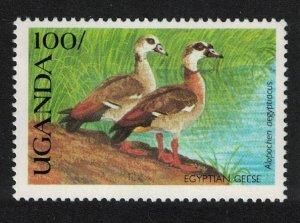 Uganda Egyptian geese Wild Birds of Uganda SG#844