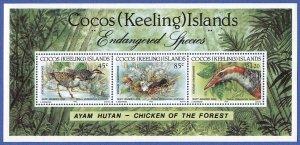 COCOS ISLANDS  1992  Sc 263  MNH  VF s/s, Endangered Birds