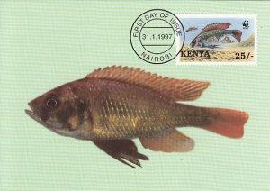 Kenya 1997 Maxicard Sc #705 25sh Girded cichlid WWF