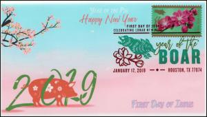 19-025, 2019, Year of the Boar, Digital Color Postmark, FDC, Lunar New Year