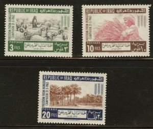 IRAQ Scott 333-335 MH* 1963 FAO freedom from hunger set