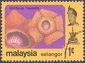Malaysia - Selangor # 135 used ~ 1¢ Flower