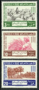 IRAQ 1962 FAO Freedom From Hunger Set Sc 314-316 MNH