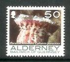 Alderney - 2007 Corals and Anemones (50p) (MNH)