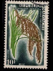 Madagascar Scott 314 Used 1960 Rice stamp