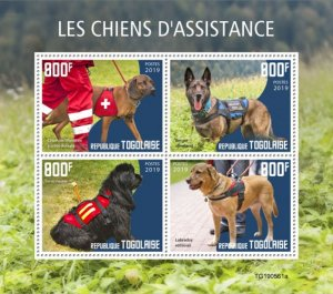TOGO 05 11 2019 Code: TG190544a-TG190564b. Assistance dogs