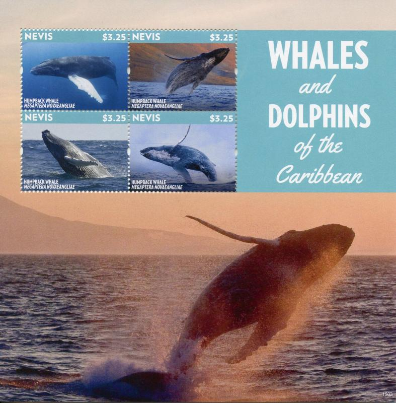 Nevis 2015 MNH Whales & Dolphins of Caribbean Humpback Whale 4v M/S Stamps